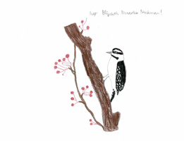 2nd 3rd Grade Honorable Mention Downy Woodpecker